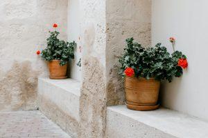 ¿Cuáles son los principales desperfectos más comunes en las fachadas?